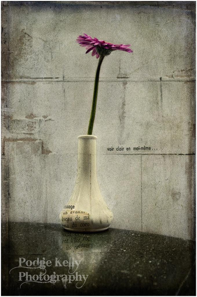 Vase & Flower 2