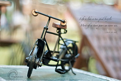 .Life.and.Bicycle. (.krish.Tipirneni.) Tags: life wood india bicycle toy handle 50mm chair nikon cycle ap hyderabad hpc andhrapradesh d80 krishtipirneni lifeislikeabicycle trkobjects