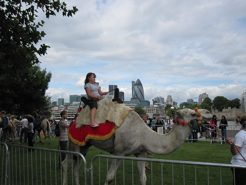 Camel Rides in More London