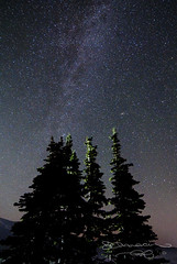 Reach For The Stars (Gary Randall) Tags: trees sky night oregon stars mthood mounthood milkyway garyrandall dsc25582