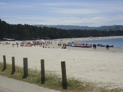 Vista de la playa, con el pinar y las Fragas del Eume al fondo