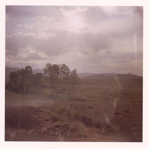 Holga - 120 film - Yellowstone aspen