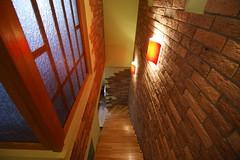 Фото с лестницы