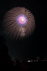 第23回東京湾大華火祭 三重芯冠菊