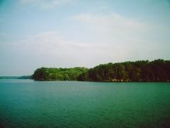 wheeler lake in august