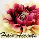 HairAccentsfromTazim
