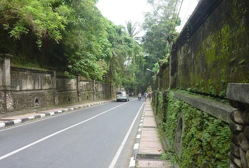 Bali-Ubud (125)
