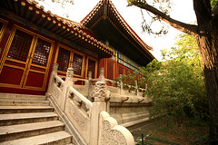Imperial Gardens 27 (David OMalley) Tags: china city red beauty architecture capital chinese beijing palace forbidden empire imperial  forbiddencity dynasty emperor  grandeur  verbotenestadt citinterdite    verbodenstad cidadeproibida cittproibita yasakehir chineseempire    ipinagbabawalnalungsod cmthnhph