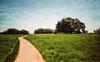 The Long and Winding Road (isayx3) Tags: santa tree field clouds 35mm nikon rosa f2 nikkor plains studios barrens d3 murrieta santarosaplateau plainjoe isayx3 plainjoephotoblogcom