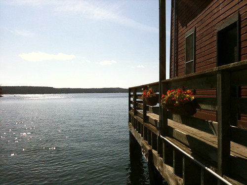 Whidbey Sparkle