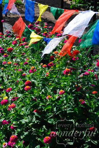 CommunityGardenFlags