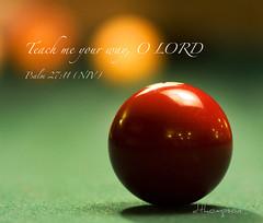 November , 2009 Psalm 27.11 (stellargldns) Tags: scriptures dthompson stellargldns saintlouismissouri