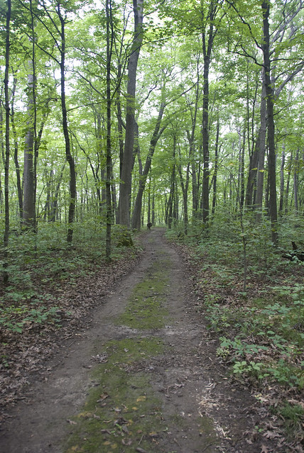 nice wide path
