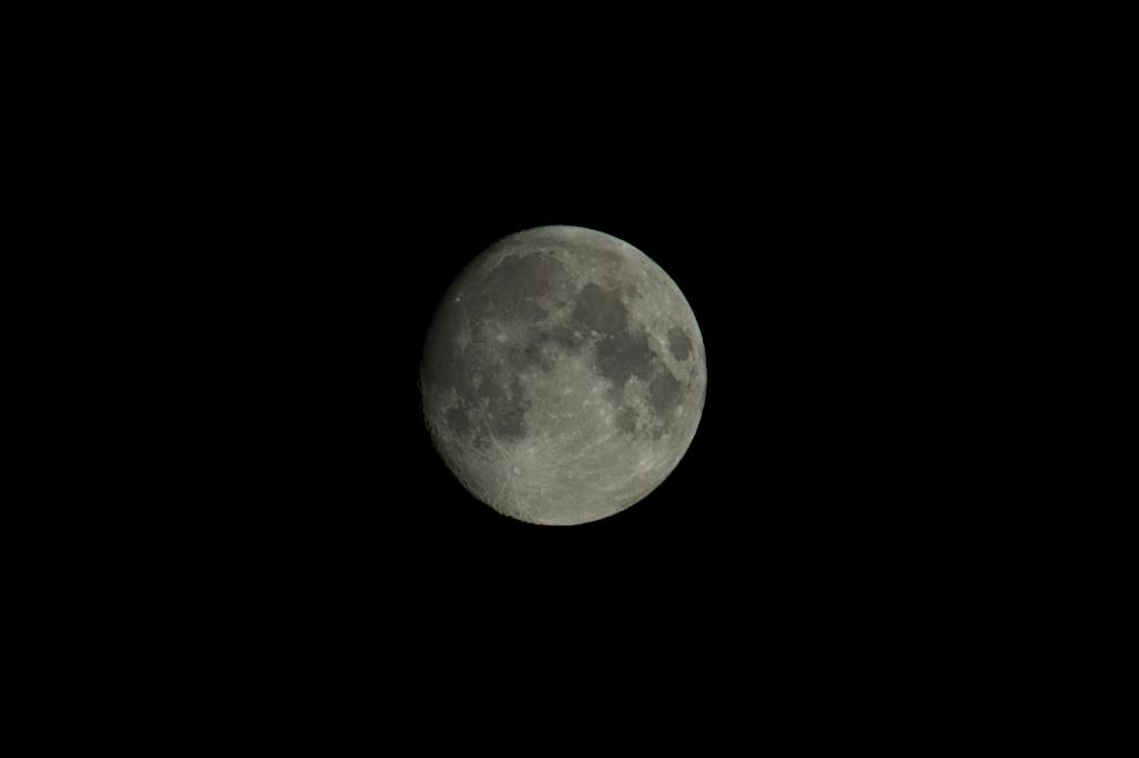 Nikon D2H's moon 1024x683