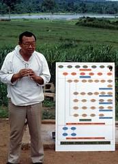 Researcher displaying cassava harvesting flow chart (IITA Image Library) Tags: researcher harvesting cassava flowcharts manihotesculenta