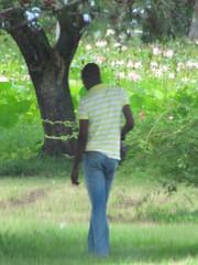 In a Trance (Legin_2009) Tags: flowers trees man black male men guy green grass shirt standing garden stand african guys jeans males dreamy caribbean polo männer hombres mec люди mecs 男子 gason אנשים الرجال पुरुषों 男子hommes 男性homens