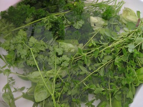 Herbs Rinsing