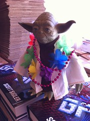 Yoda drinks he will