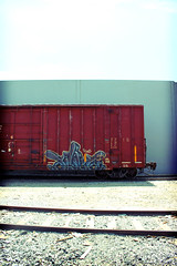 size 21 (DCAN 1) Tags: train graffiti grafitti rail graff freight rxr 81510