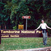 Tamborine National Park Tour