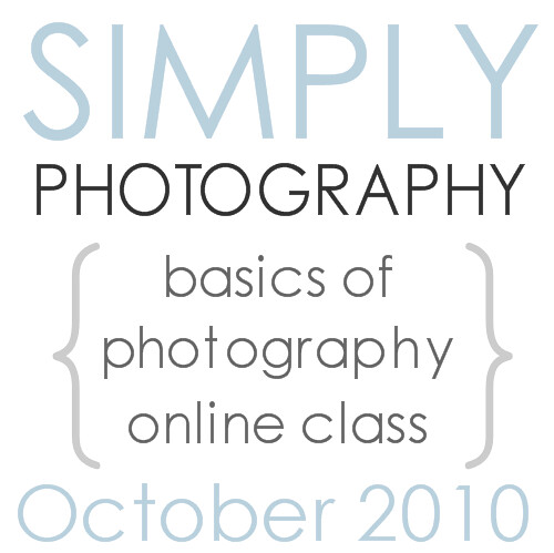 FALL BASIC blog button ad 14e