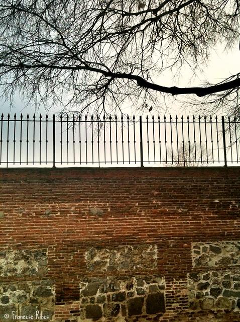 (282) El Muro