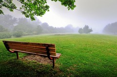 have a seat and watch the fog (Rex Montalban Photography) Tags: rexmontalbanphotography fog bench park jayceepark stcatharines hdr