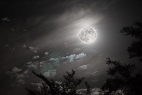 Albuquerque Moon