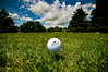 178/365 - Ready for take off (Micah Taylor) Tags: trees sky green minnesota clouds ball golf course explore fairway executive 137 roseville cederholm project365 topflite