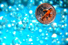 Vacationing On A Dime (JD Hancock) Tags: blue favorite money scale fun toy miniature coin little small perspective floating bubbles explore cc tiny figure dime ho economy btp onblue hoscale littledudes inkitchen macromondays