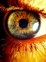 eye see you (143/365) (JAMES ANTHONY CAMPBELL) Tags: iris detail macro eye iphone iphone4 iphoneography swankolab