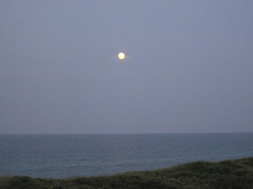 Moon Over Miami?