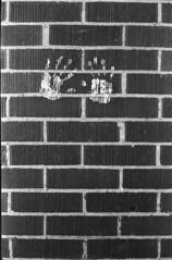 schoolyard brick (r.nial.bradshaw) Tags: blackandwhite film 35mm iso200 minolta fujicolor himatic7s caffenol644c5