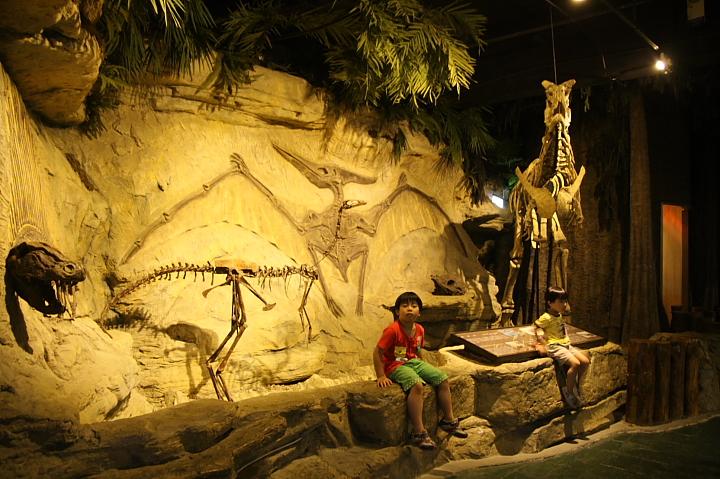 台北市立動物園台灣動物教育館0028