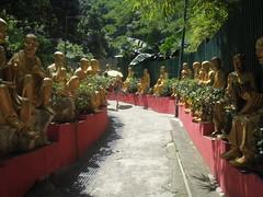 Buddha6
