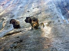 IMGP0722 (Pantera and Mateusz) Tags: summer june spain holidays pentax climbing limestone optio mallorca escalada baleares 2010 sagubia balearicislands wspinanie optiow80 pentaxoptiow80