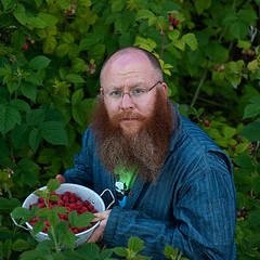 Grandma's Colander (billpusztai) Tags: seattle bear red beard ed ginger berry daniel redhead raspberry fruity luce oaf wuvableoaf wuvable edluce