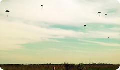 PQD (:: vinicius maciel) Tags: selva 27 amaznia brigada humait paraquedista infantaria batalho pqd pqdt
