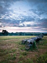 Northamptonshire Upland (Anologital) Tags: uk morning sky pine sunrise northamptonshire olympus zuiko northants 1122 uplands fawsley daventry e410