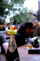 Perched Dirk (Georgie_grrl) Tags: b friends toronto ontario cute yellow fun toy photographers social pentaxk1000 perched alfred rubberduck flickrmeet duckie bulmers thepourhouse hbw dupontstreet rikenon12828mm dirkduckly myfirstmeetasanadmin