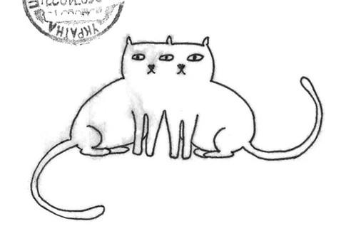 EyeSharing Cats