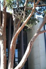 20100711_7296 Meme by Phin Murphy, Marie Sierra & Jim Sinatra (williewonker) Tags: tree australia victoria meme mansion bundle werribee wyndham helenlempriere werribeepark jimsinatra helenlemprierenationalsculpturalaward nationalsculpturalaward phinmurphy mariesierra
