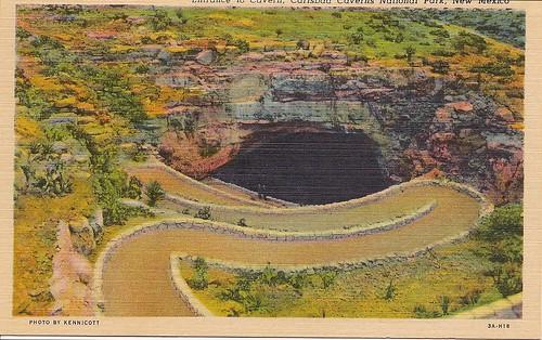 Carlsbad Caverns Postcard