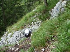 P1030292 (tr00pswuz) Tags: camping austria rafting flyingfox wuz wildalpen tr00ps zipplining tr00pswuz