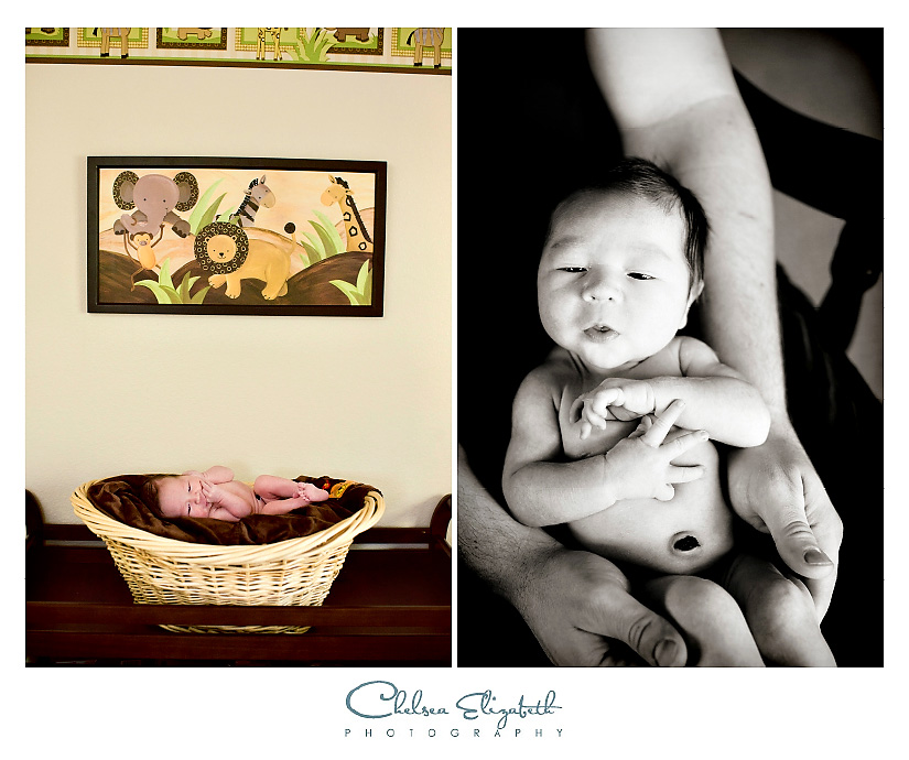 Newborn nurseery photography