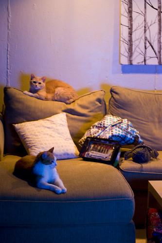 lounging + knitting