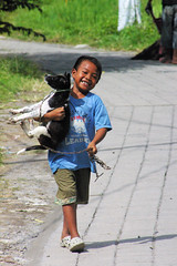 Ubud Boy & His Puppy (cwgoodroe) Tags: bali chicken blanco birds museum indonesia dancers rice feathers statues peacock carvings patties ubud legong paddies padies