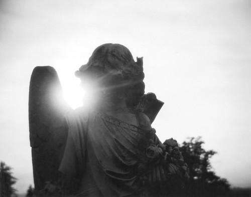 Holga Angel