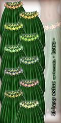 Hula Ti-Leaf Skirt (w/Plumeria) - Long - All Colors