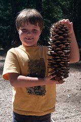 Brody with a HUGE Pinecone Photo